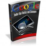 Google_Traffic_Tips_Tactics_And_Strategies