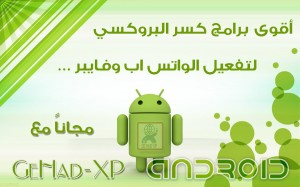 375010_539750789404043_466208009_n