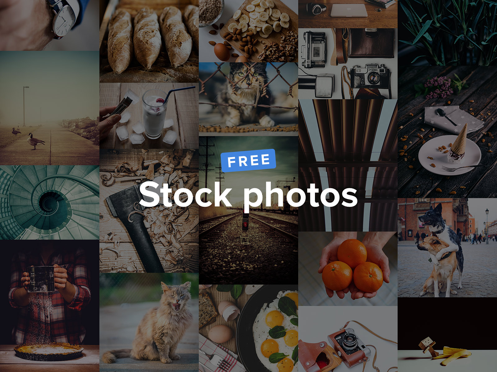 برنامج, برنامج صور, دقة عاية, Tookapic Stock